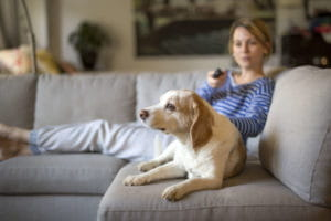 Woman and Dog Relaxing on Couch
